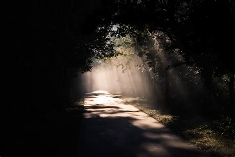 Light On The Path Steve Fraser Photography