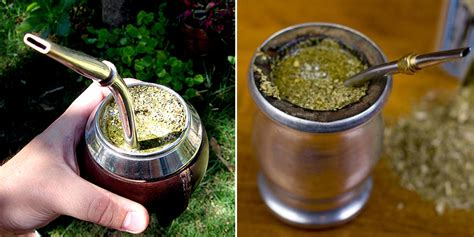 what is matte tea how to make yerba mate tea traditionally or without a