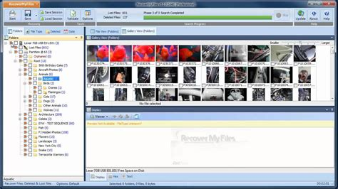 data recovery full version crack free download tingnersrahinstand blog