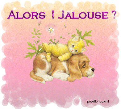 jalousie gif mes gifs jalousie page 2