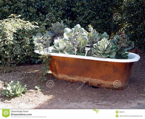 vieille baignoire jardin de baignoire images libres de droits image 596919