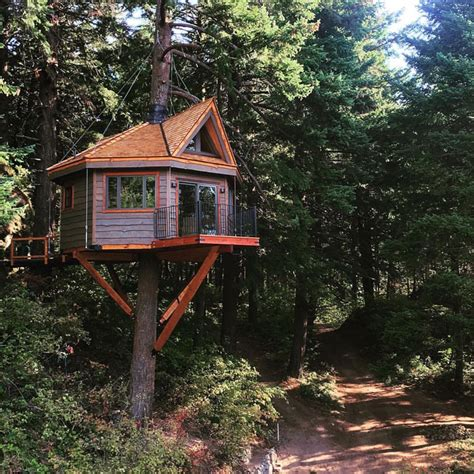 three houses osprey treehouse at the resort at skamania coves 1