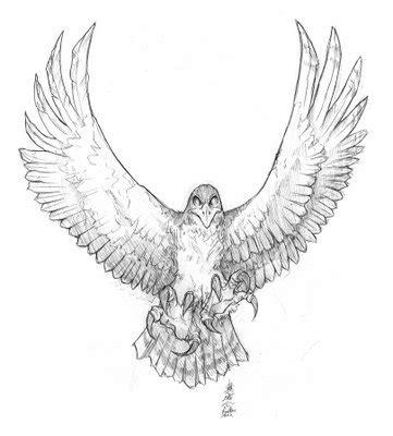 black and grey hawk tattoo 55 best hawk tattoos design and ideas