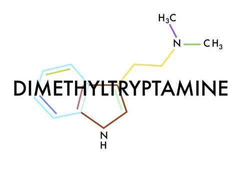 dmt molecule tattoo 22 best dmt images on psychedelic