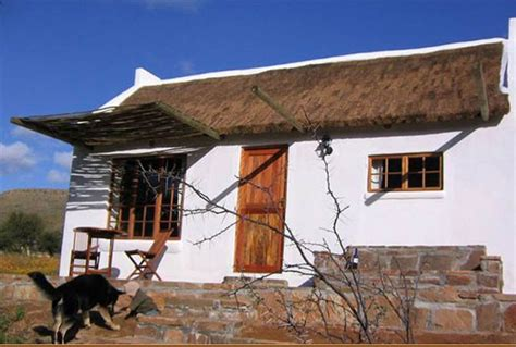 dog houses south africa 10 dog friendly cottages in south africa south africa travel