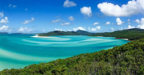 whitsunday island tours rtw backpackers