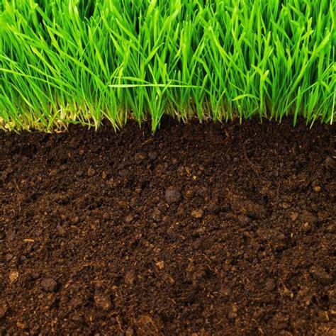 backyard soil evergreen topsoil sand gravel in kenmore wa 98028