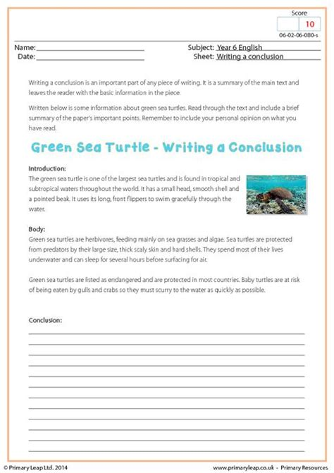 Lost At Sea Worksheet Answers by Writing A Conclusion Green Sea Turtle Primaryleap Co Uk