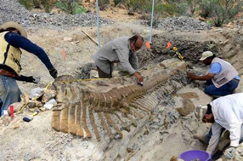 en tierra de dinosaurios coahuila se convierte en tierra de dinosaurios origen noticias