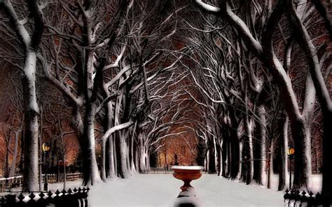 christmas in central park back drops for santa pics new york city winter wallpaper 62 images