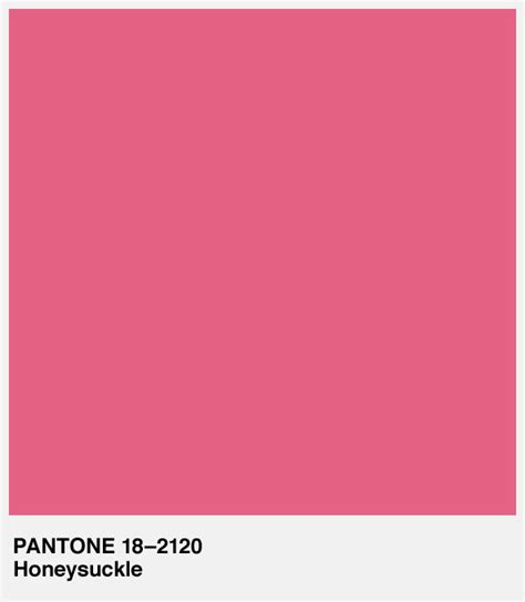pink pantone pantone color of the year 2011 jenny nybro peterson