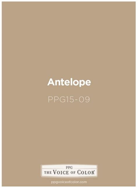 voice of color antelope paint color by ppg voice of color get this paint