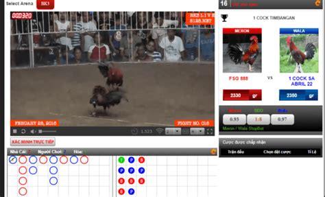 tutorial gambar ayam tutorial bermain taruhan di situs judi sabung ayam online