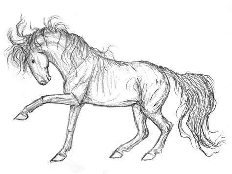 mustang horse drawing mustang sketch by vizseryn on deviantart