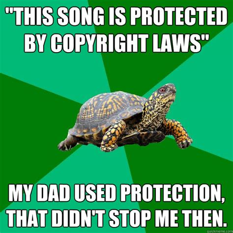 Turtle Memes - quot this song is protected by copyright laws quot my dad used