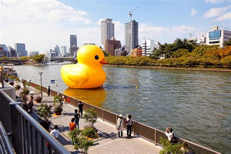 Rubber Duck Pittsburgh Location by Four Story Duck Headed To Pittsburgh 90 5 Wesa