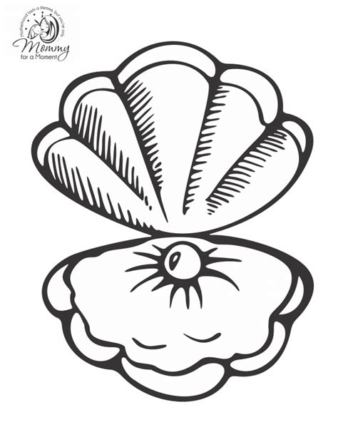 seashell coloring pages preschool seashells coloring pages coloring home