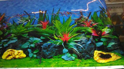 Jual Termometer Untuk Akuarium jual background aquarium gambar belakang aquarium oni