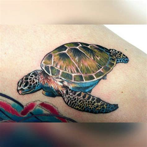 1000 Images About Tattoos On Pinterest Sea Turtle Green Sea Turtle Tattoos