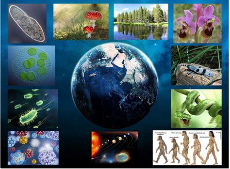 Imagenes Sobre Ciencias Naturales | portadas de ciencias naturales imagui