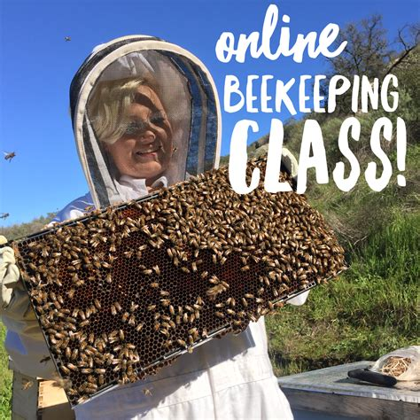 honey bee decorations for your home 100 honey bee decorations for your home beekeeping