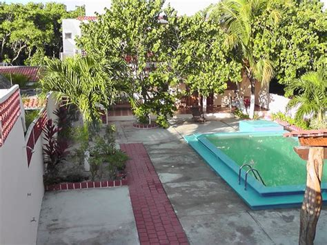 pool area with plants picture of el perico marinero rio lagartos tripadvisor