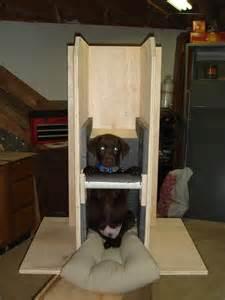 canine megaesophagus evolution of sidney s bailey chair