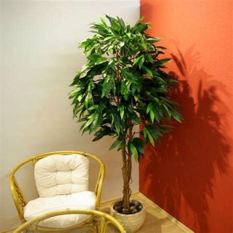 piante da cortile piante finte da arredo piante finte arredare con le