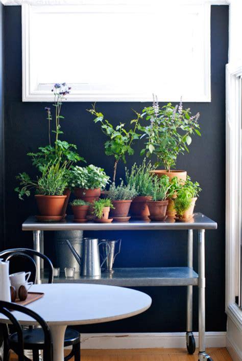 indoor herb garden ideas home design  interior