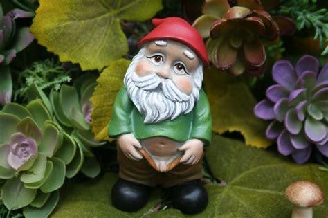 obscene garden ornaments google search naughty gnomes