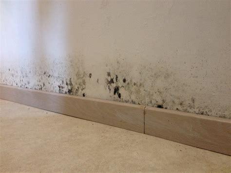 Enlever Moisissures Plafond by Traiter Un Mur Ou Un Plafond Contre Le Salp 234 Tre