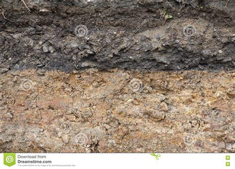 Soil Cross Section by Cross Section Of Underground Soil Layers Stock Photo Image 71137149