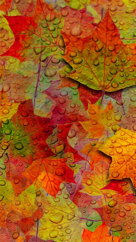 wallpaper iphone 6 fall wallpapers of the week autumn