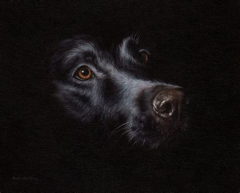 Dark Brown Duvet Cover Black Labrador Painting Painting By Rachel Stribbling