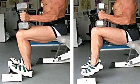 dumbbell seated calf raise bodybuilding wizard