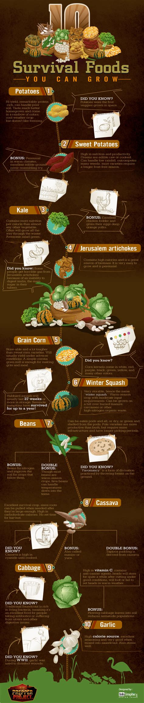 best survival food survival food 10 you should be growing yourself ready