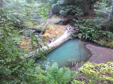 boat basin of waterplace park secret spots at big basin santa cruz ca big basin was