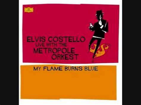 my lyrics elvis costello that s how you got killed before elvis costello with