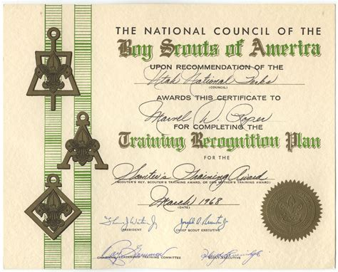 boy scout certificate templates alf img showing gt bsa scouts certificate template