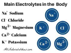 importance of electrolytes in the body all natural ideas