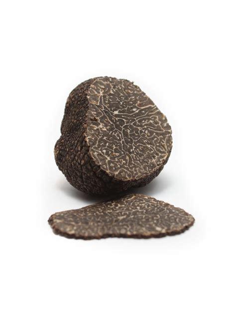 black winter fresh black winter truffle mikuni harvest