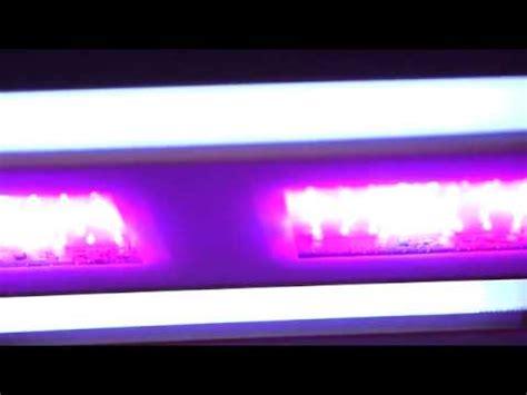 california light works uvb par test review california lightworks solar system 5