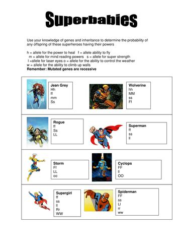 punnett square review worksheet superbabies punnett square worksheet by efranklin