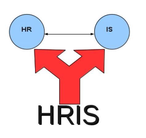 Hris Specialist by Hris Analyst Resume 100 Hris Analyst Resume Exle Team Hris Lifetime T Shirts Hoodie