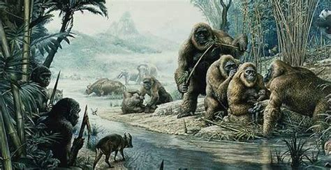 bigfoot west coast a history of gorillas and other monsters in california oregon and washington state books gigantopithecus diet revealed paleontology sci news
