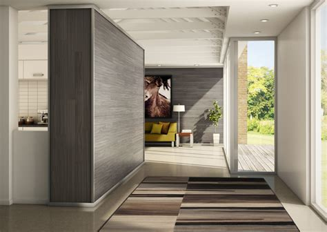 Ideas For Bathrooms Remodelling bolero rug in modern hallway modern hall toronto
