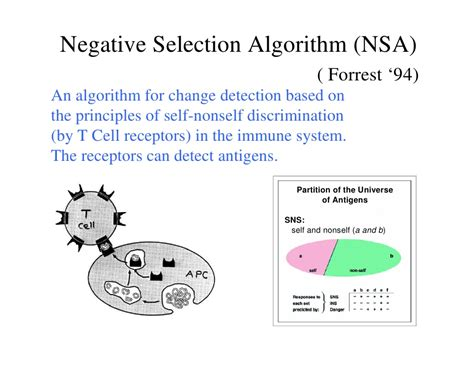 anomaly detection principles and algorithms terrorism security and computation books negative selection for algorithm for anomaly detection