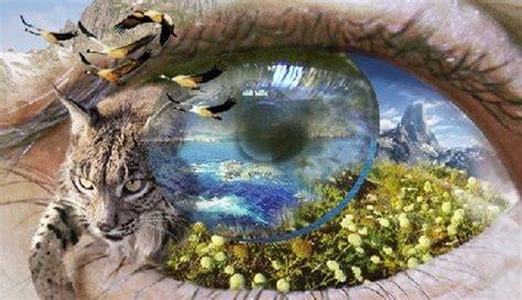 imagenes sobre ciencias naturales 191 qu 233 es ciencias naturales su definici 243 n concepto y