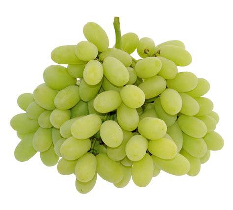 my ate 3 grapes stella 174 green seedless grapes 1kg momobud