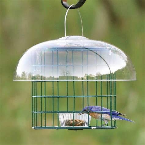 duncraft com duncraft 3078 caged mealworm bird feeder